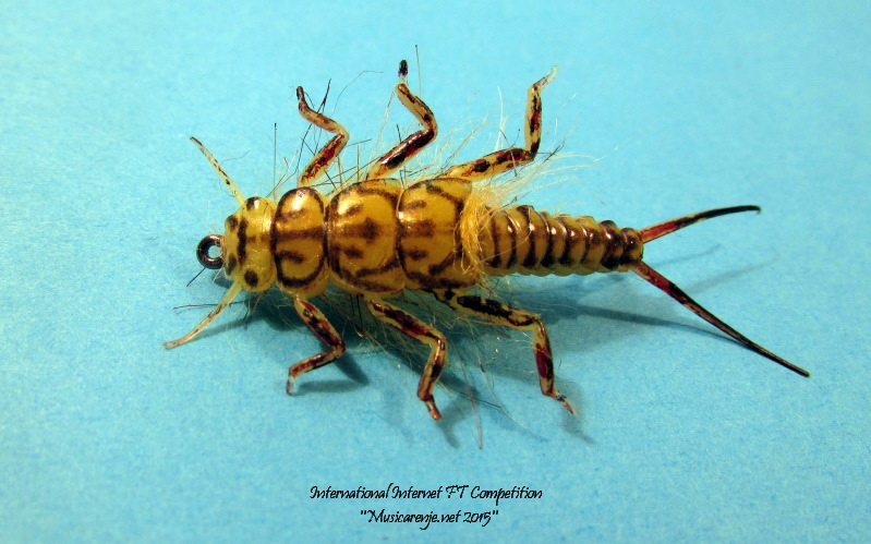 Stonefly_Nymph_by_Haris_orovi